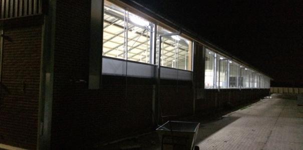 Nieuwbouw ligboxenstal te Zetten